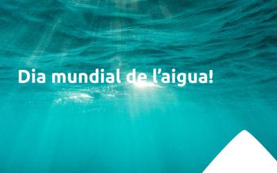 Avui és el dia mundial de l'aigua!